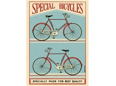 Plakat - Special bicycle - 50x70
